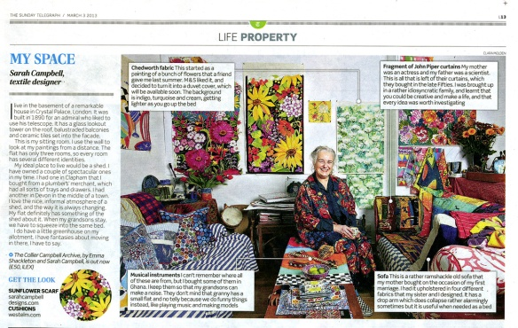 My Space Sunday Telegraph