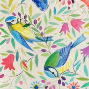 painted birds calico