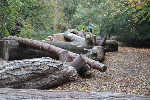 logs at kew